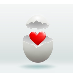 red heart in the broken egg vector image