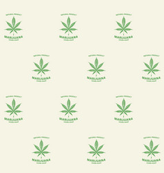 seamless pattern with green cannabis labels vector image