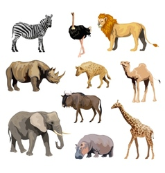Wild African Animals Set vector image