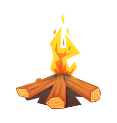 burning bonfire colorful vector image