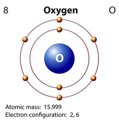 Diagram representation of the element oxygen vector image vector image