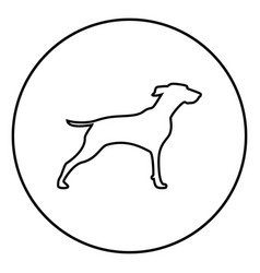 hunter dog or gundog icon black color simple image vector image