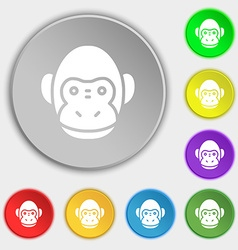 Monkey icon sign Symbol on eight flat buttons vector image