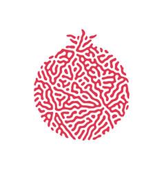 pomegranate fruit icon logo rosh hashanah hashana vector image