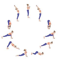 Sun salutation surya namaskara yoga sequence vector
