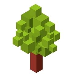 tree plant isometric icon vector image