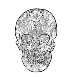 Line art and tattoo of skull vector image