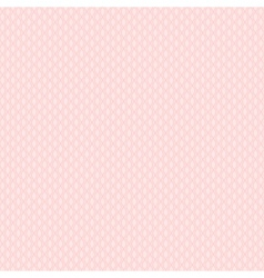 Chic seamless patterns Pink white vector image vector image