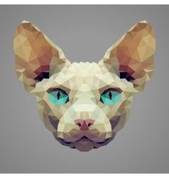 Sphynx cat low poly portrait vector image vector image
