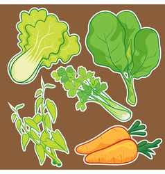 Cute Vegetable set vector