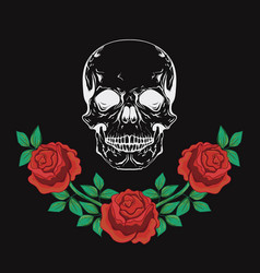 graphic designskull and roses vector image