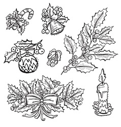 Hand drawn holly decorations set vector