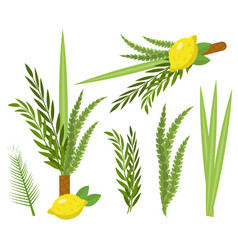 Happy sukkot set collection of objects design vector