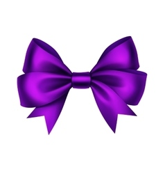 Purple satin gift bow isolated on white vector