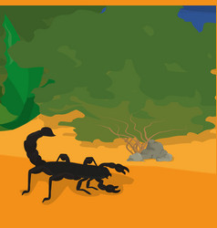 scorpion at desert vector image