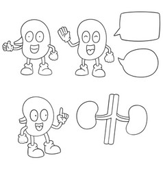 set of kidney cartoon vector image