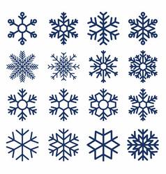 set snowflakes snowflake texture vector image