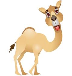 camel cartoon vector image
