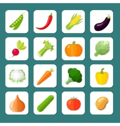 Vegetables Icon Flat vector image vector image