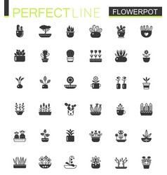 black classic house plants and flowers in vector image vector image