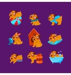 Pet Puppy Everyday Activities Set vector image vector image
