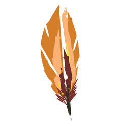 Brown color feather or color vector