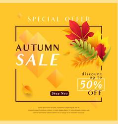 fashion yellow autumn sale vector image