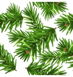 Green Christmas pine tree branch seamless vector image