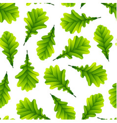green oak leaves isolated on white background vector image