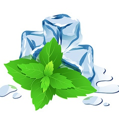 Ice cubes with mint isolated on white vector image