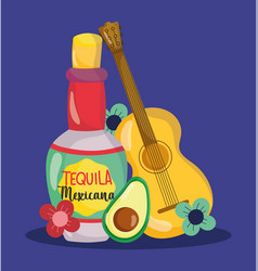 mexican independence day guitar bottle tequila vector image