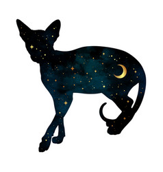 Silhouette cat with crescent moon and stars vector