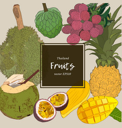 thai-fruits sketch set vector image