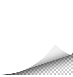 White sheet of paper with curled corner vector