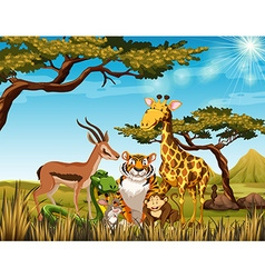 Wild animals in the savanna field vector image