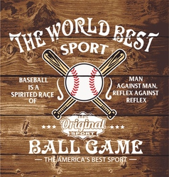 baseball the world sport vector image