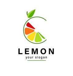 Abstract logo color slice citrus fruits vector
