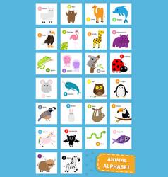 animal zoo abc alphabet cute cartoon set baby vector image