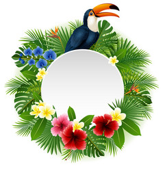 cartoon toucan funny plants middle empty vector image