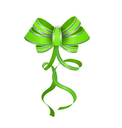 Green realistic double gift bow vector