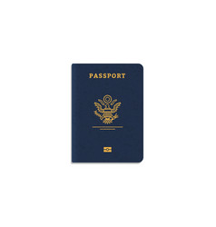 international passport cover vector image