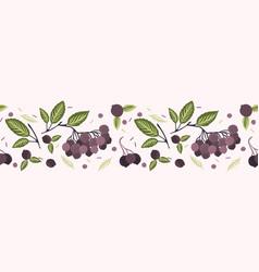Realistic aronia berry vector