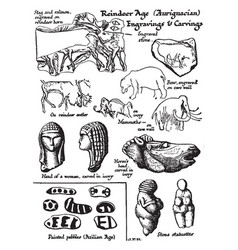 Reindeer age engravings and carvings shown are vector