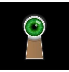 Cartoon green eye peeping through the keyhole vector image
