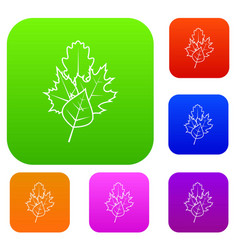 leaves set collection vector image