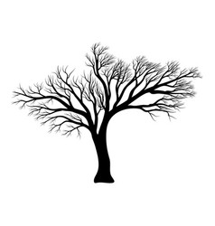 bare tree silhouette symbol icon design vector image