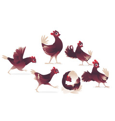 cartoon cute chicken cock rooster chick set vector image