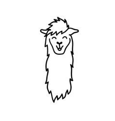 cute character lama vector image