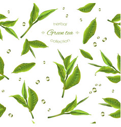 Green tea pattern vector