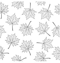 hand drawn maple leaves on white background vector image